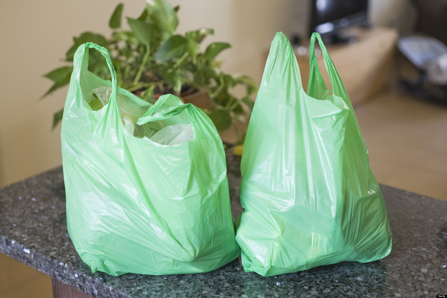 plastic bags 2 essay Read this essay on why not to use plastic bags come browse our large digital warehouse of free sample essays get the knowledge you need in order to pass your classes and more.