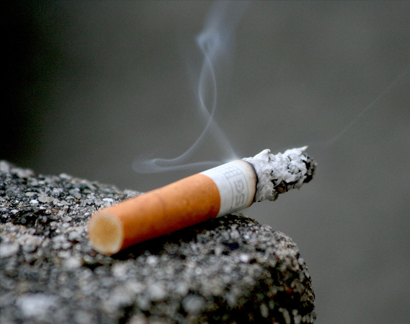 a study of cigarette smoke It's no secret cigarette smoke can be detrimental to your lungs and heart however, scientists have recently discovered that marijuana inhalation could be even worse, according to a new study.